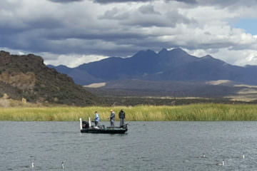 saguaro lake fishing guide trip