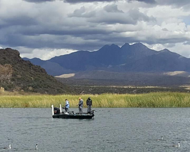 saguaro lake fishing guide trip